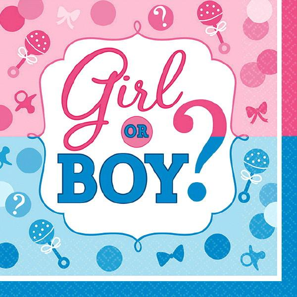 Girl or Boy? Beverage Napkins (32 in a package)