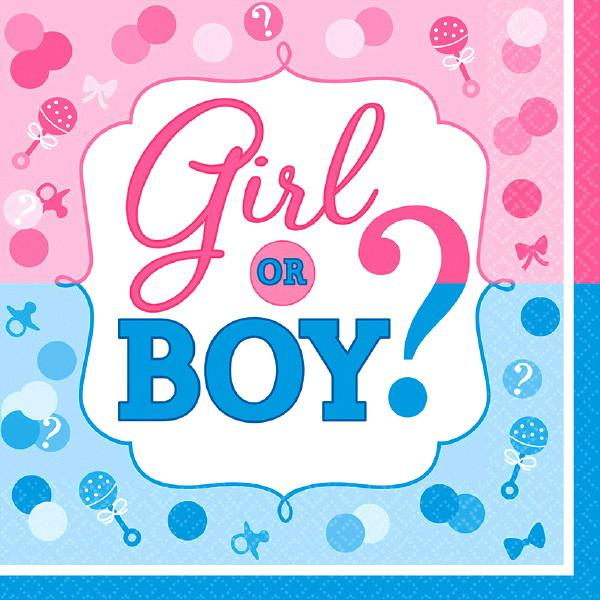 Girl or Boy? Luncheon Napkins (32 in a package)