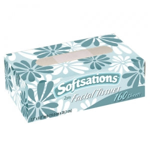 Facial Tissue Box 160 Sheets (Case Qty: 5760)