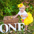 Bebes Tulle Princess Cake Smash Outfits 1 Year Baby Girl Birthday Dress Vestido Infant Party