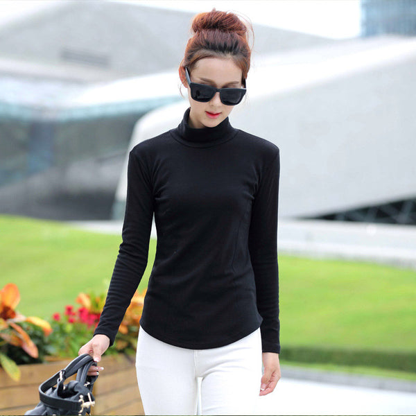 Plus Size M-4XL Fashion Spring & Autumn Blusa Women Turtleneck Winter Tops Slim Casual Long Sleeve T Shirt For Women 2017 A795