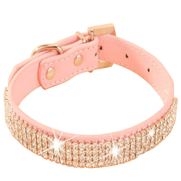 Sweet Baby Sparkly Leather Collar