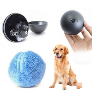 Self Rolling Activity Ball for Dogs