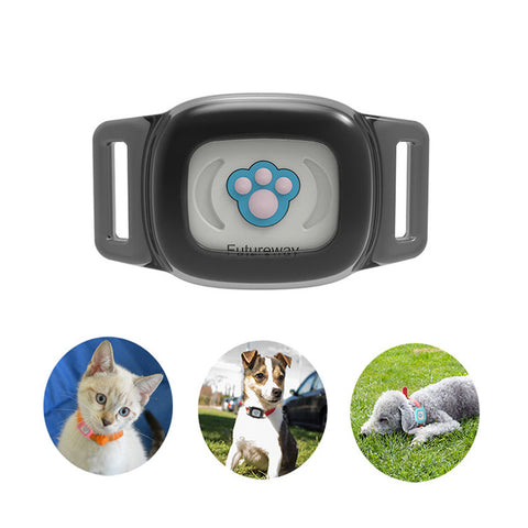 Smart GPS Cat Collar Black