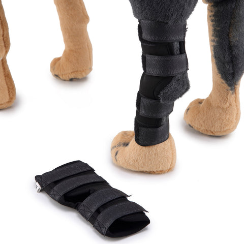 Image of Dog Leg Brace