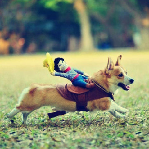 Image of Cowboy Dog Costume
