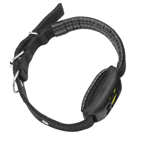 Image of GPS Track Collar