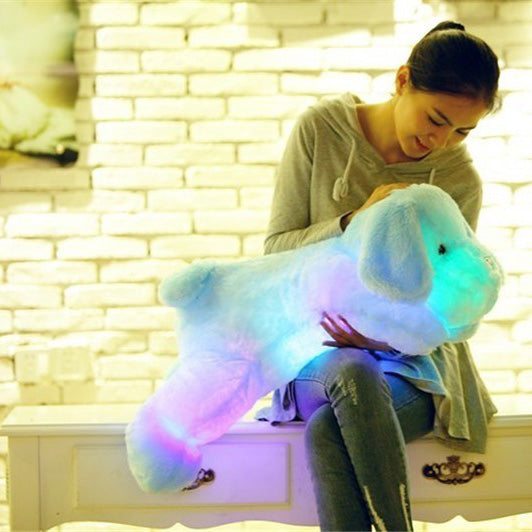 Cute Luminous Puppy