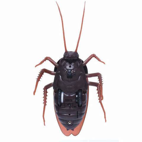 Image of Remote Control Cockroach