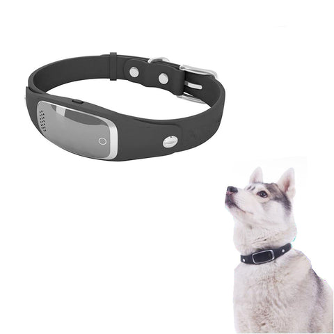 Smart Gps Dog Collar – Real-time Tracking – Android & Iphone Apps Black