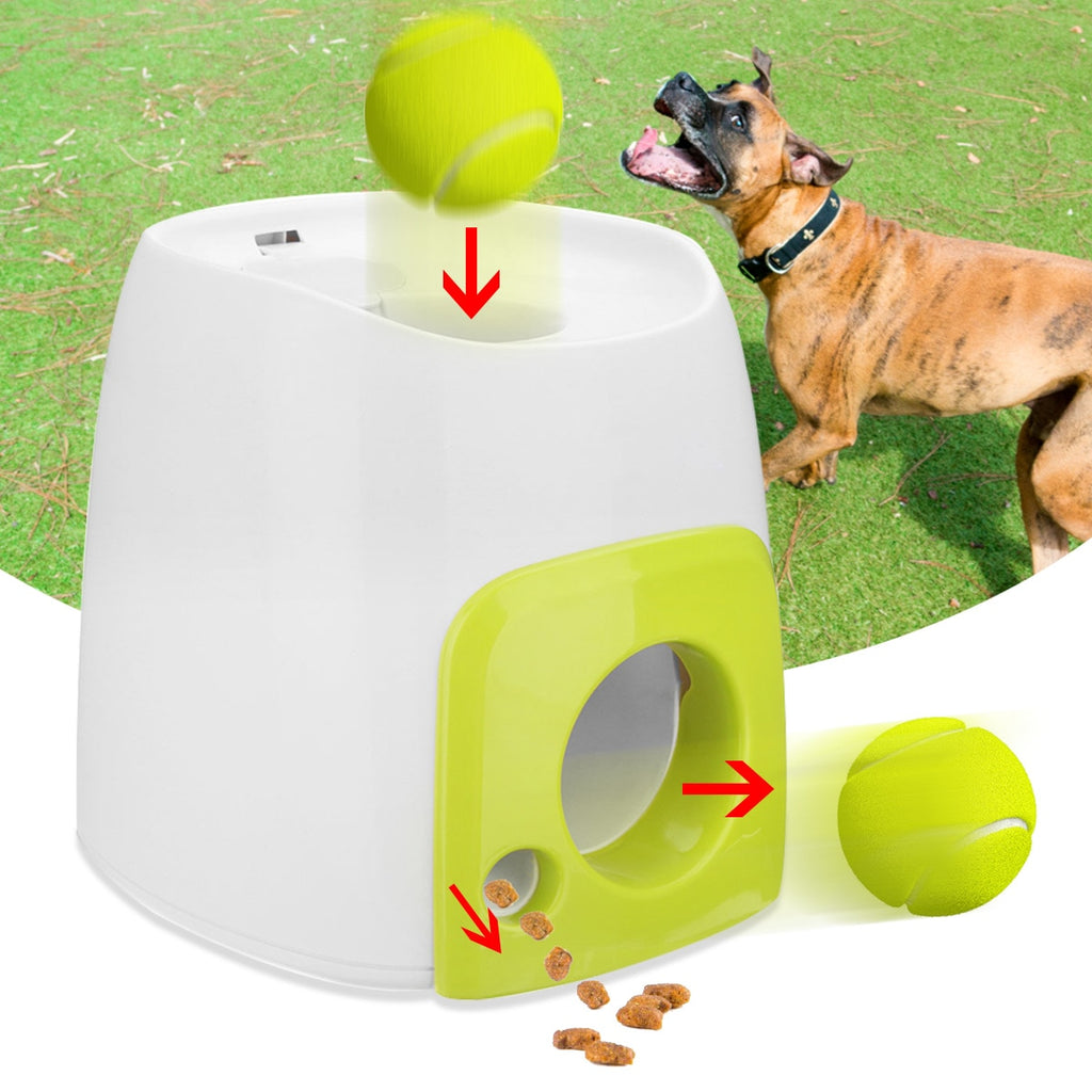 Automatic Dog Treat Dispenser
