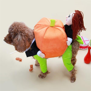 Halloween Pumpkin Dog Costume White / L