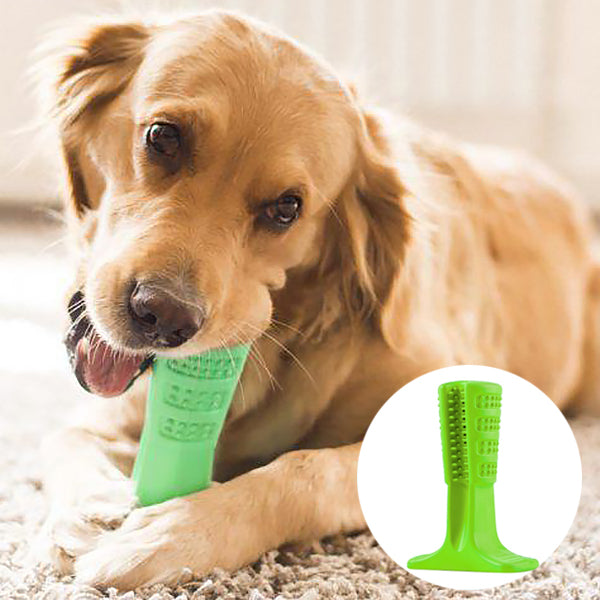 Vet's Choice Dog Toothbrush Green