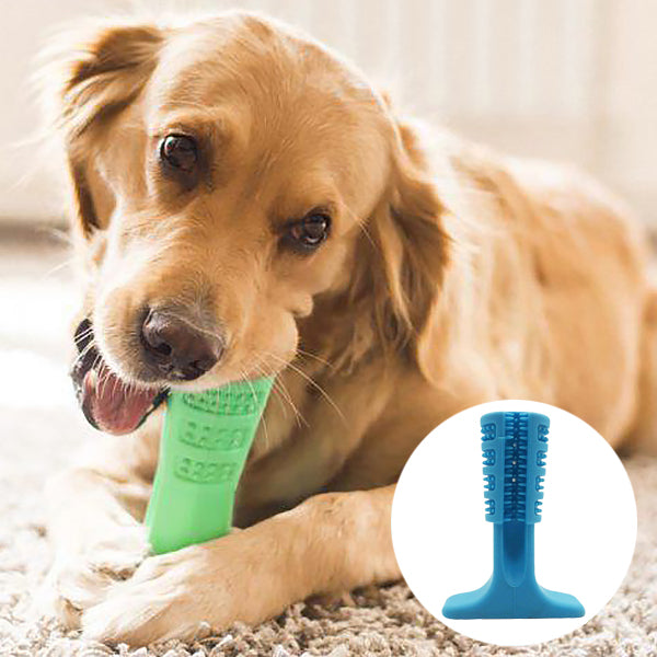 Vet's Choice Dog Toothbrush Blue