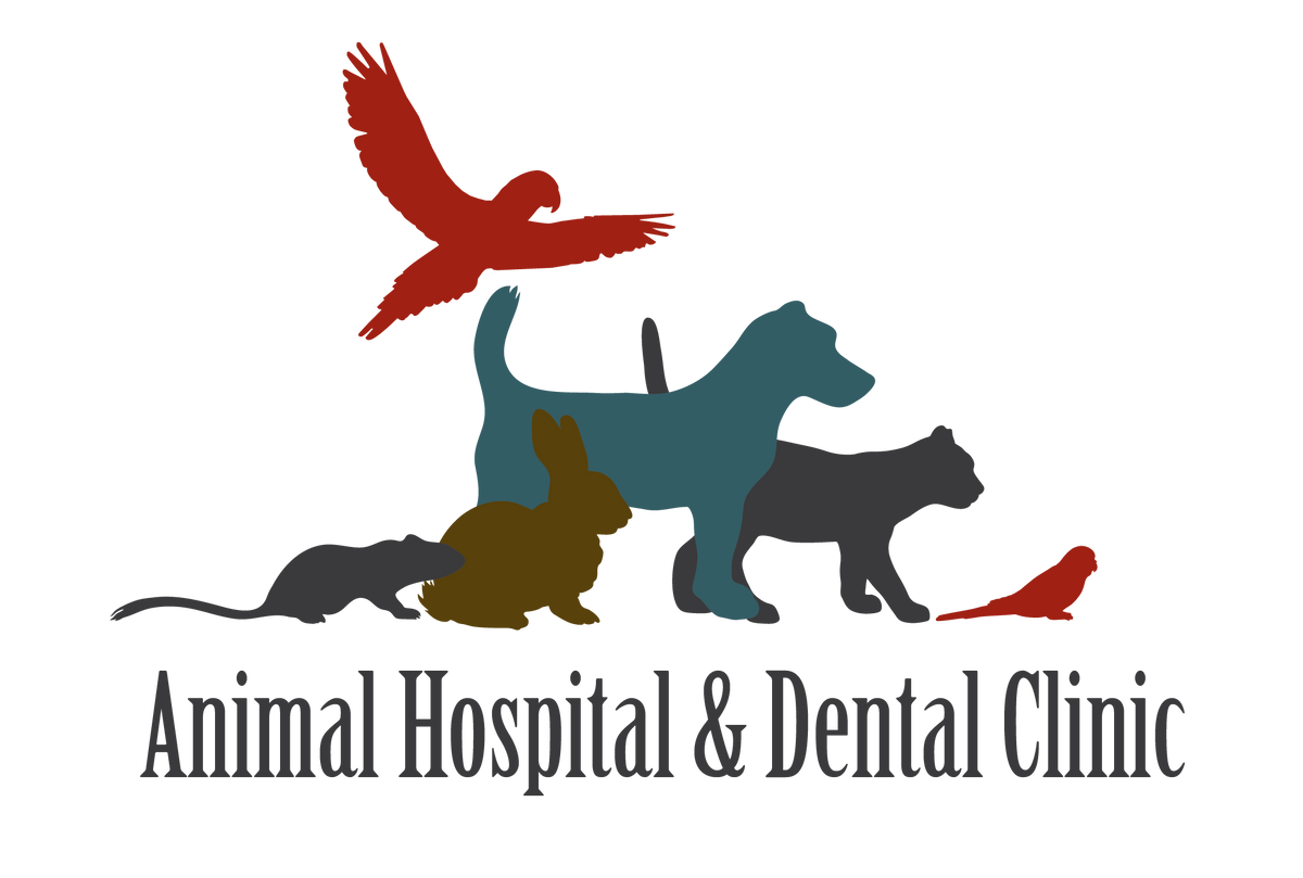 Services – Animal Hospital and Dental Clinic