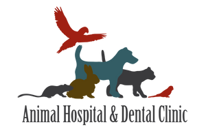 Animal Hospital and Dental Clinic