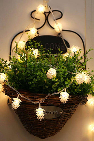 White Christmas Pine Cone String Lights - Decor - Evan & Jane