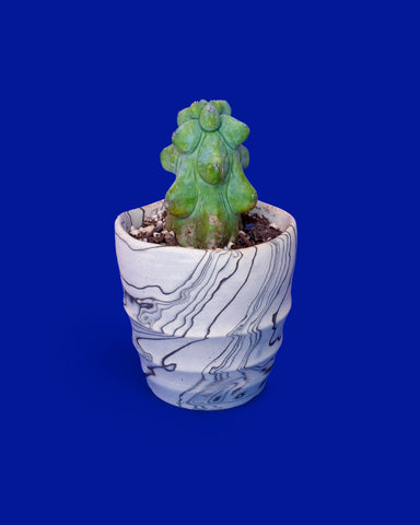 Distortion Marble Planter