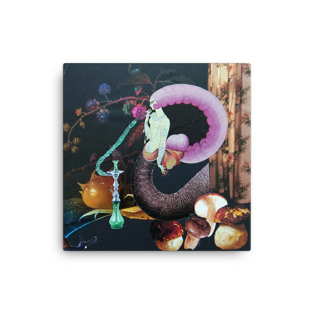 Bong Song Canvas Print