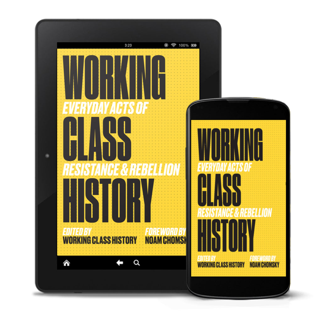 Working Class History: Everyday Acts of Resistance & Rebellion e-book