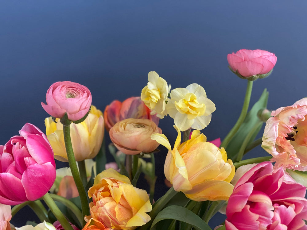 Tips for Making Your Tulips Last