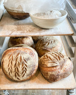 What is Sourdough?