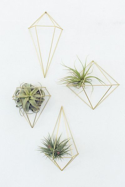 palletbedz brass geometric wire shapes by UMBRA