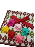 Evogirl Evogirl Slider Pin Bow with Bow Multicolored Med Size for Girls/rb1580