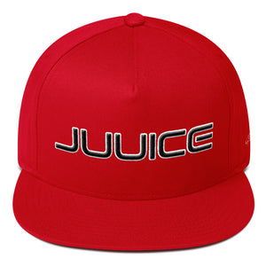 "Juuice Puffy Icon ""Sho-Bizz"" Special Edition Flat Bill Hat"
