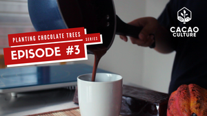 Planting Chocolate Trees Vlog Series Episode #3: Tablea Hot Chocolate Recipes