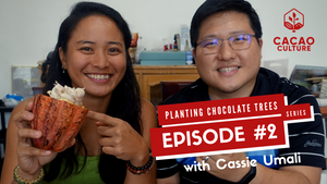 Planting Chocolate Trees Vlog Series: Episode #2 What Does Cacao Fruit Taste Like?