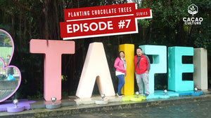 Planting Chocolate Trees Vlog Series Episode #7: Cacao Culture in Taiwan Part 2