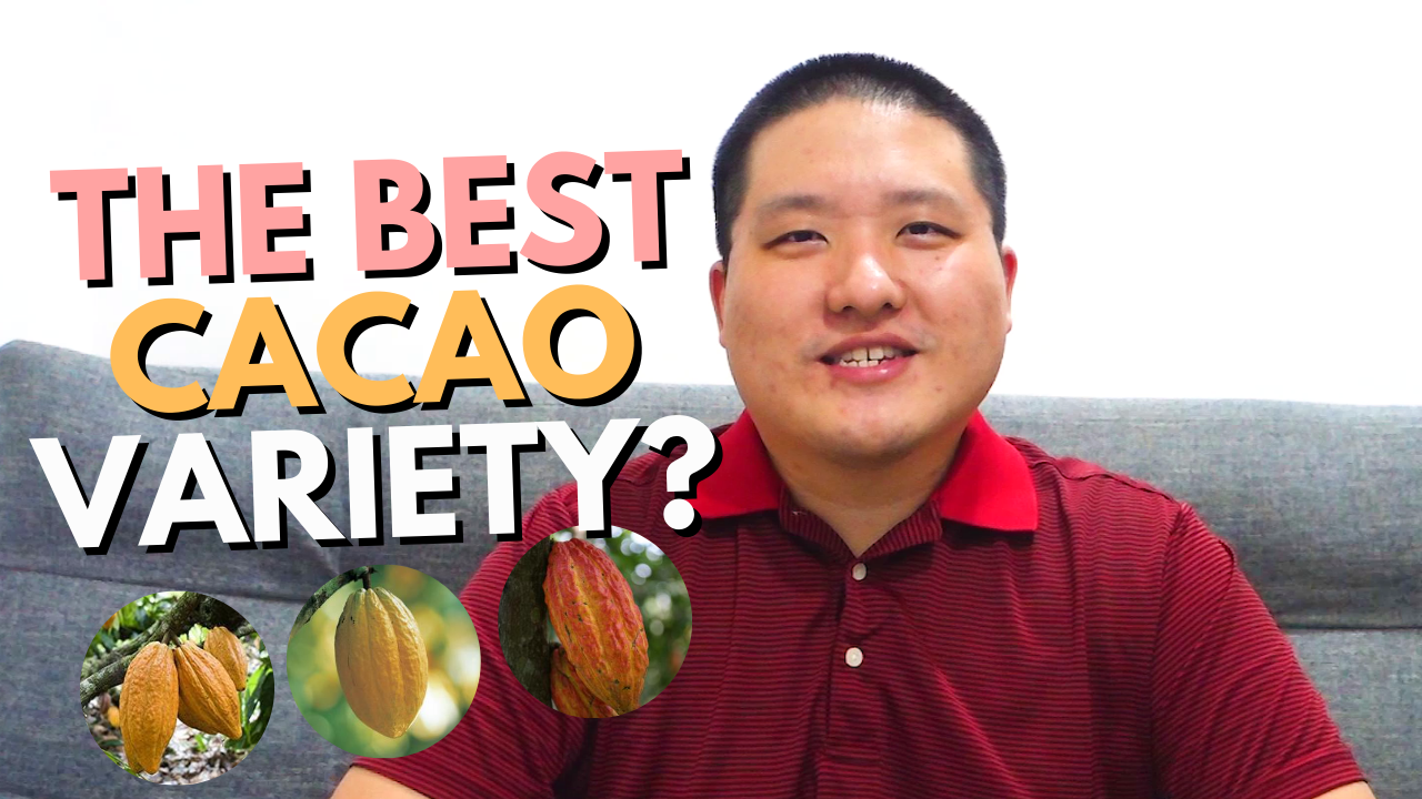 Which is the best cacao variety