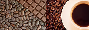 Coffee & Cacao Planting Coming to Iloilo Province - PhP10 Million Worth of Planting Materials Ready for Distribution