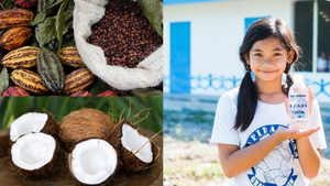 Friends of Hope, Inc.  - Cacao and Coconut Intercropping