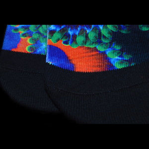 Eagle Eye Zoanthid Socks