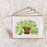 green plant with small flowers in terracotta vase set of five handmade cards