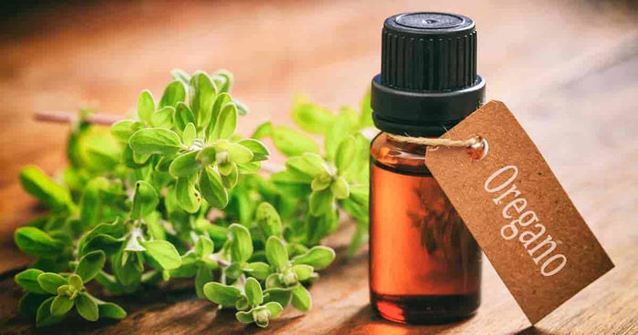 Health Properties of Oregano oil