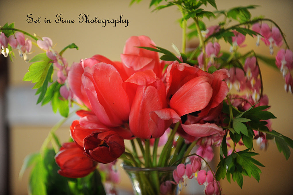 Tulips And Bleeding Hearts
