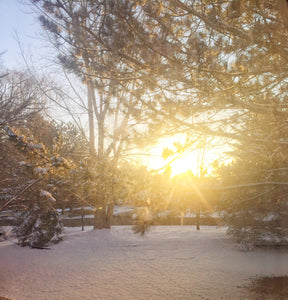 Sunrise On Fresh Fallen Snow