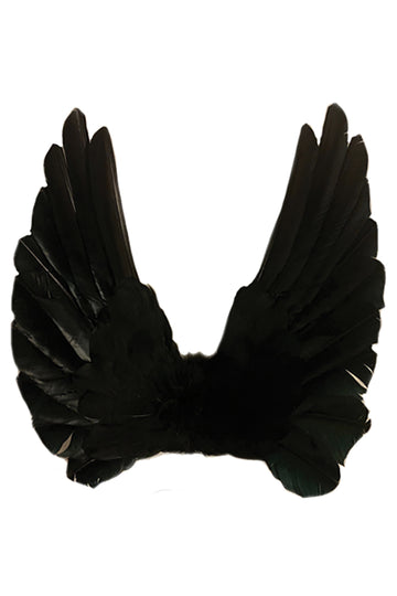 Floating Wings in Black
