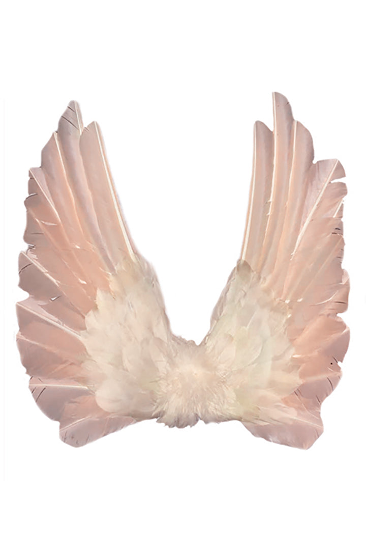 Floating Wings in Blush Peach