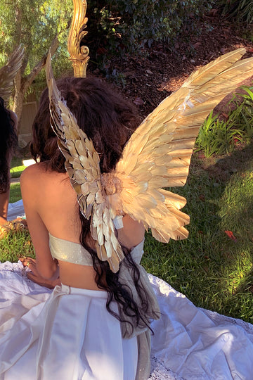 Gilded Floating Wings