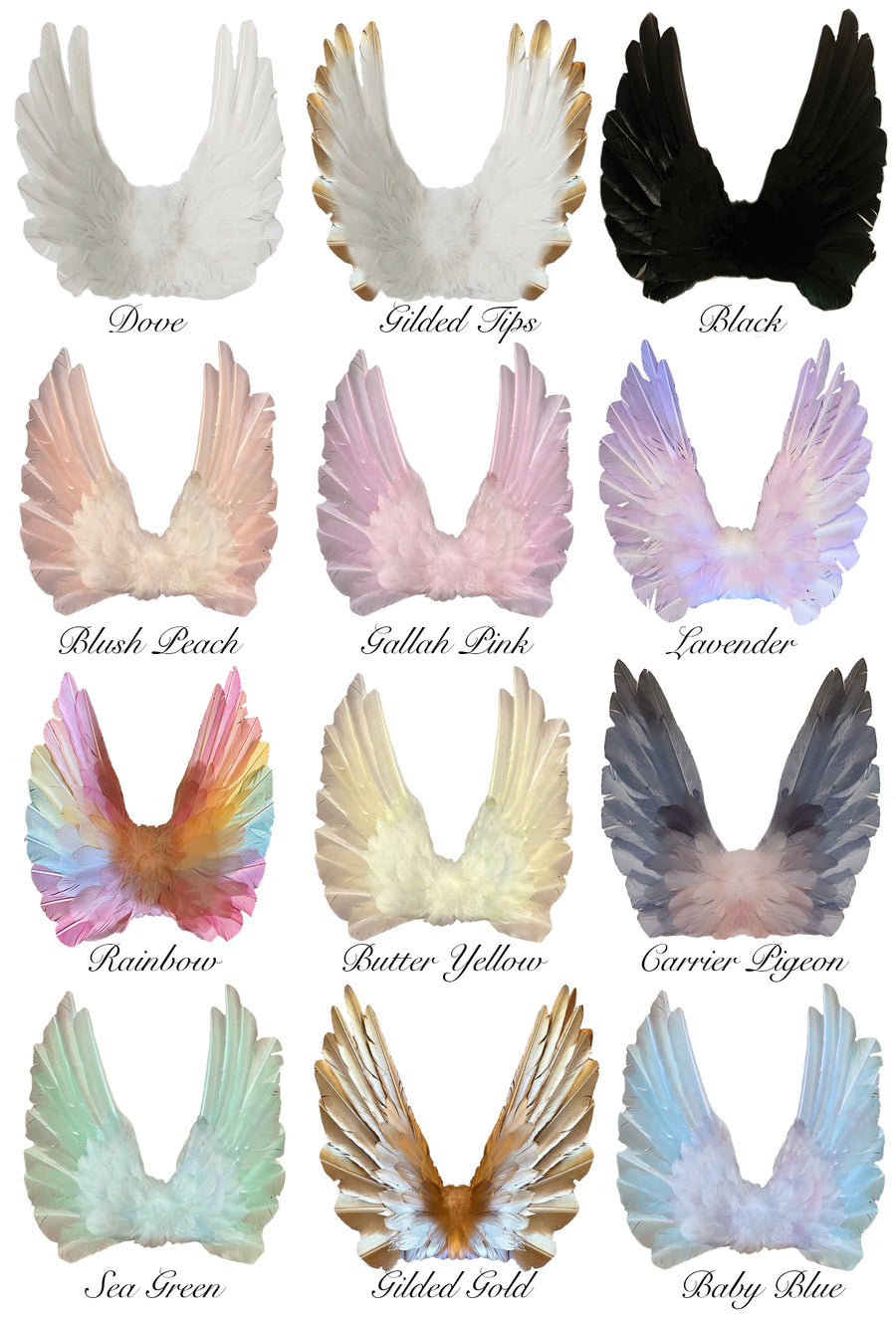 Floating Wings in Pastel Rainbow