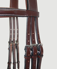 HBW-209 Bridle, Anatomic, Raised with Flash
