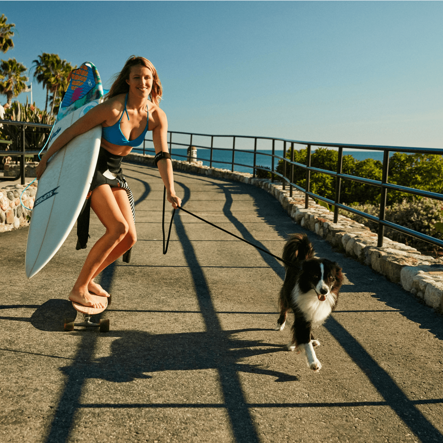 Surfer girl on a skateboard wearing Bingin Dog 'Back in Black' velcro dog leash handle around her arm while Border Collie runs beside her.