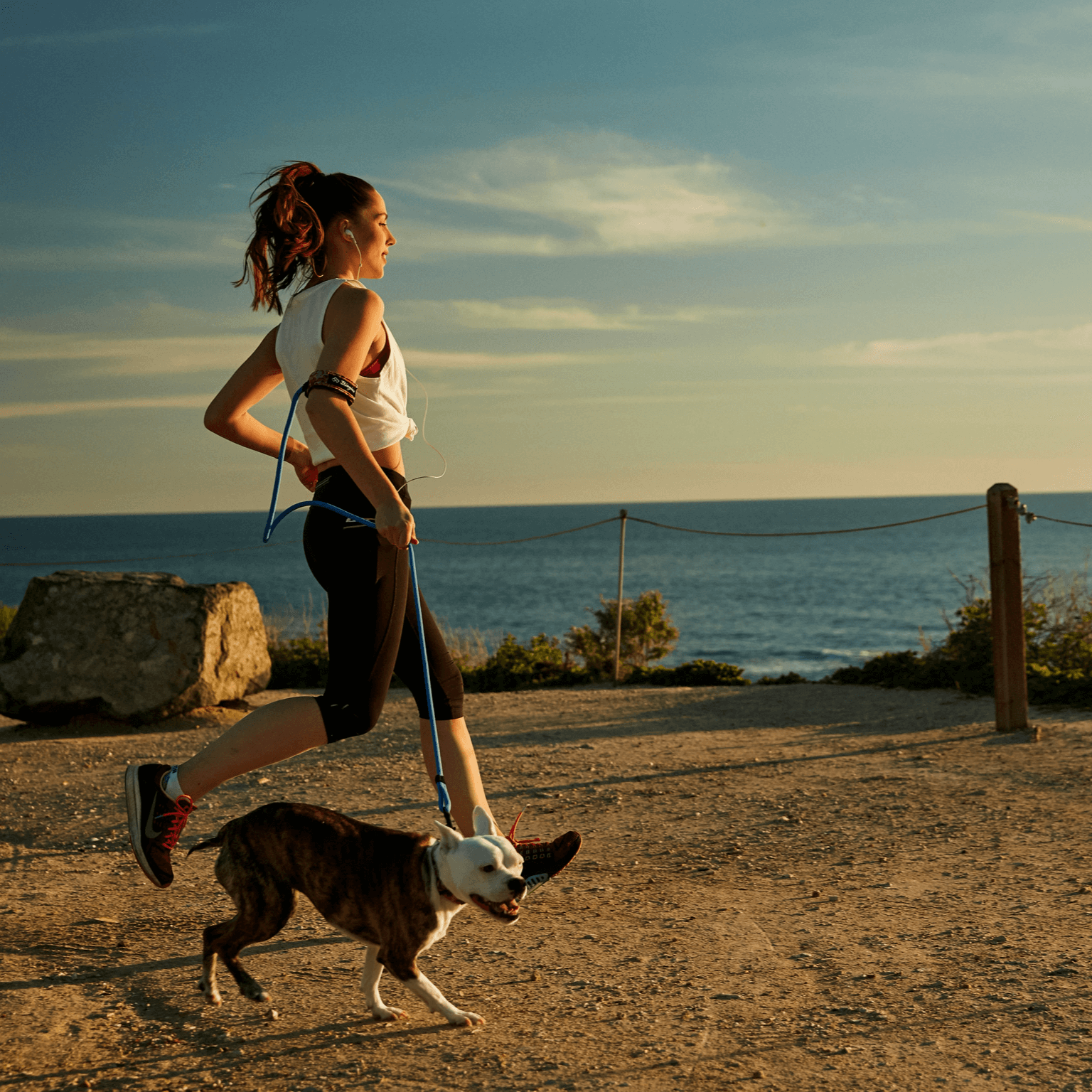 Female jogging with Boston Terrier in Laguna Beach, with Bingin Dog 'Hanalei' surf-style dog leash velcro'd around her upper arm.