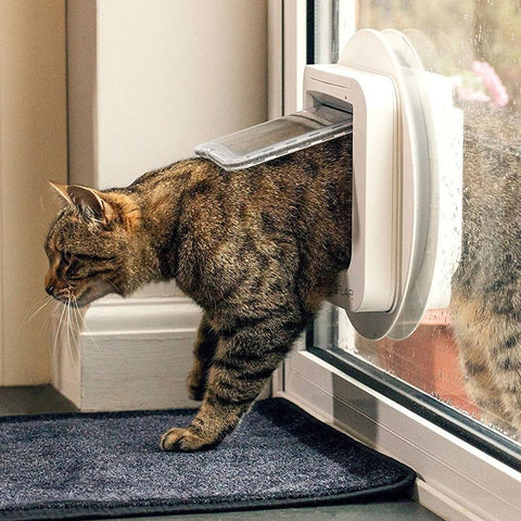 Cat and Dog Flaps | Double Glazing | Essex