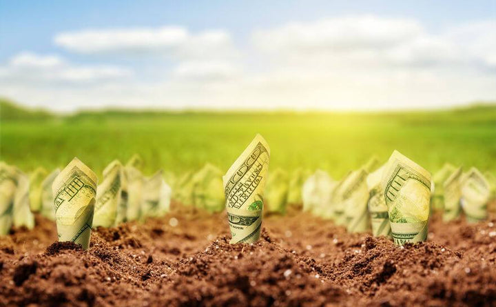 How to Rent out Your Raw Land and Put Cash in Your Pocket