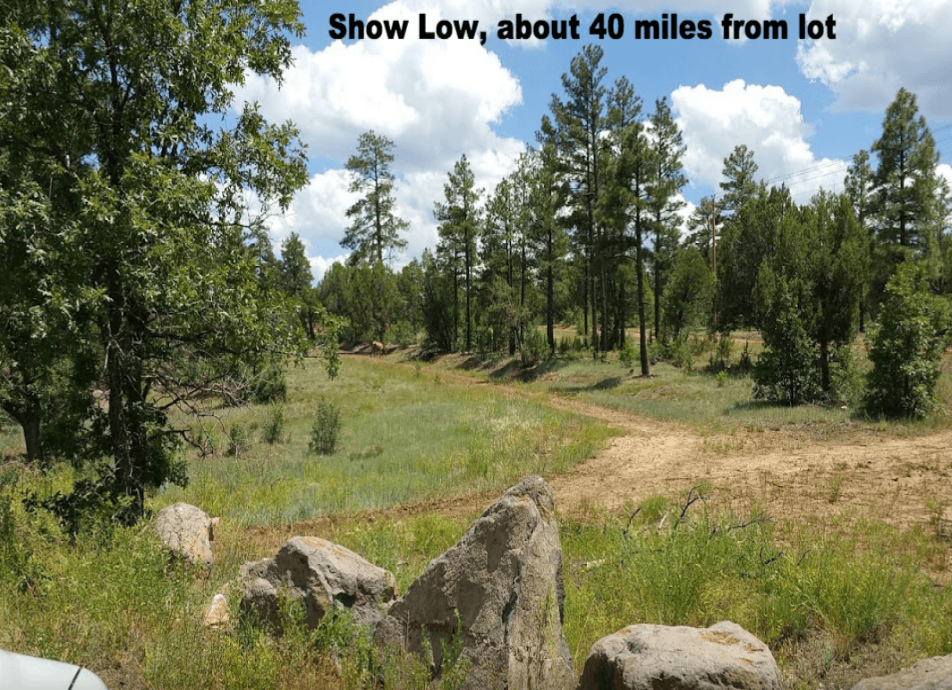 Arizona lot Near Show Low $3,200.00
